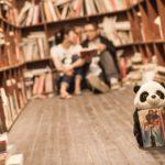 本屋 好きのための、本屋通いをやめる方法 「二階ぞめき」計画
